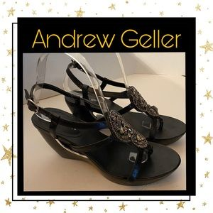 Andrew Geller
